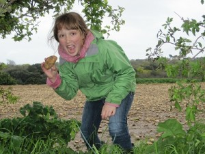 'Borrowing' Jersey Royals from a farmer's field