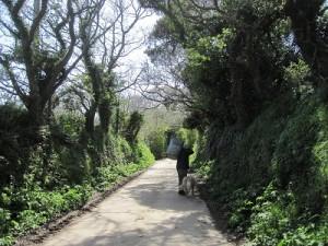 Laneway to Le Paysage