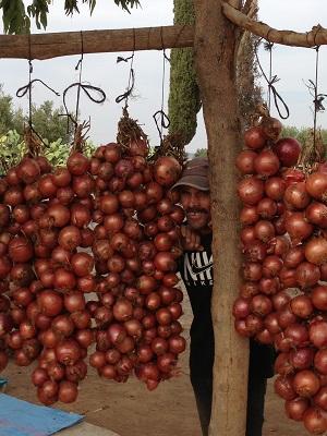 Roadside onions
